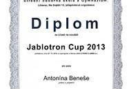 Diplom-Beneš-Jabotron cup 2013