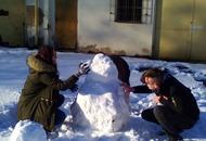 sněhulák3